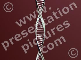 dna - powerpoint graphics
