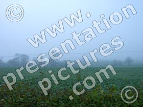 fog - powerpoint graphics