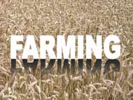 farming - powerpoint graphics